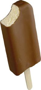 Homemade Vanilla Ice Cream Bar